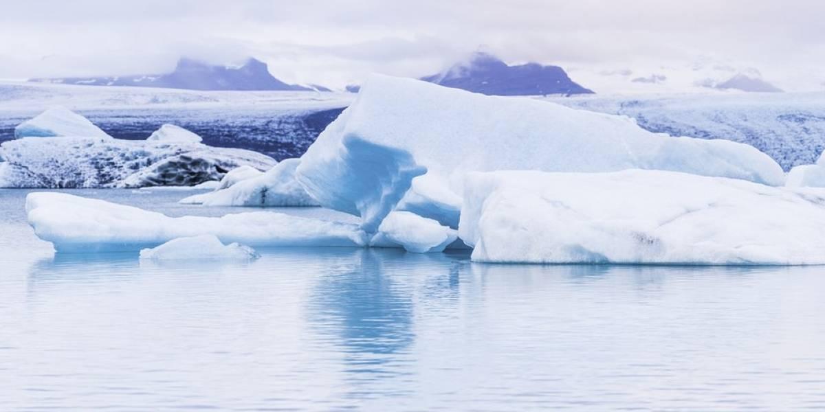"""""""Es una locura, una locura"""": El Ártico registró su invierno más cálido y hielo marino alcanzó mínimos históricos en esta época del año"""