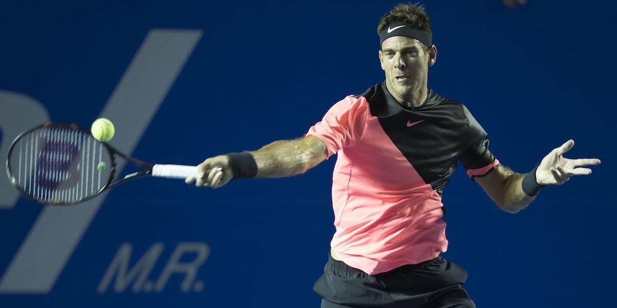 Del Potro elimina a Ferrer en 'final adelantada' del Abierto Mexicano de Tenis