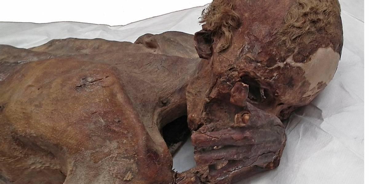 A descoberta em duas múmias de 5 mil anos que revoluciona o que sabemos sobre o Egito Antigo