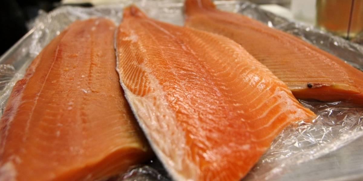 Washington prohíbe el cultivo de salmones en jaulas