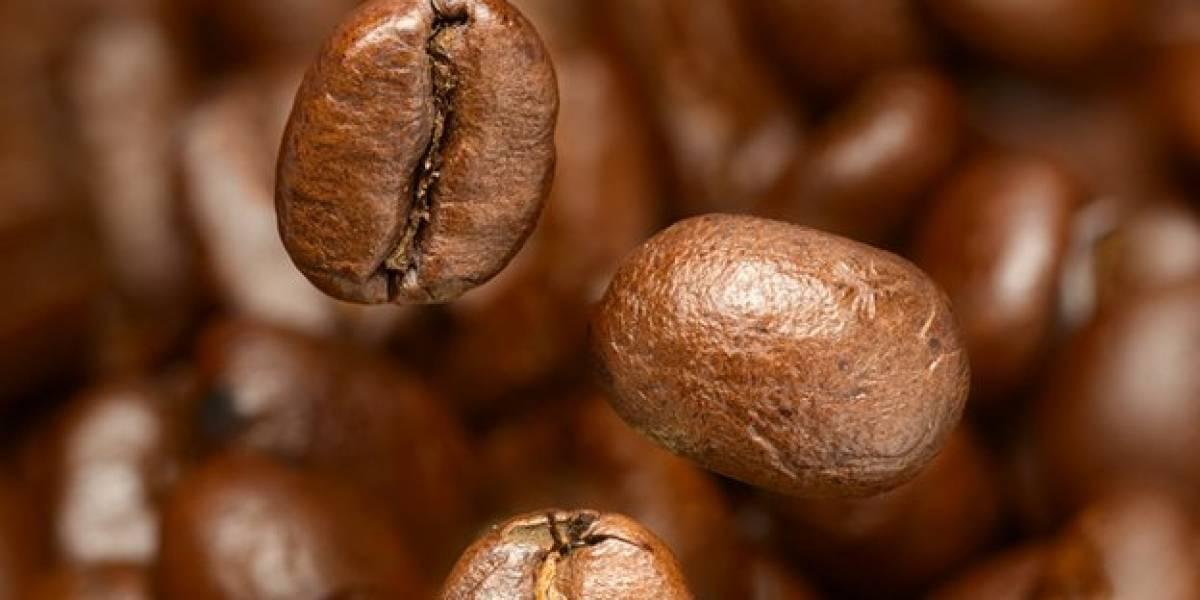 Este es el café colombiano que vende una libra por más de $340.000