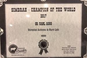 """""""Sr. UANL A068"""", recibió el premio mundial de su especie, Simbrah World, en Houston, Texas"""