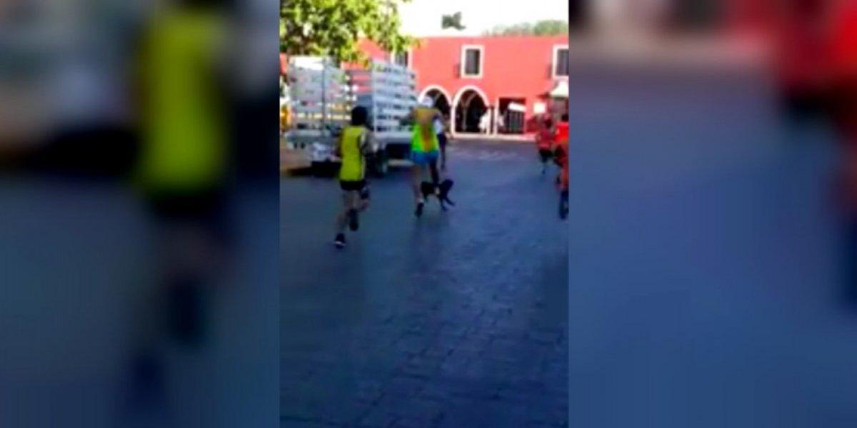 VIDEO: Atleta patea al perro que lo acompañó a la meta de una carrera