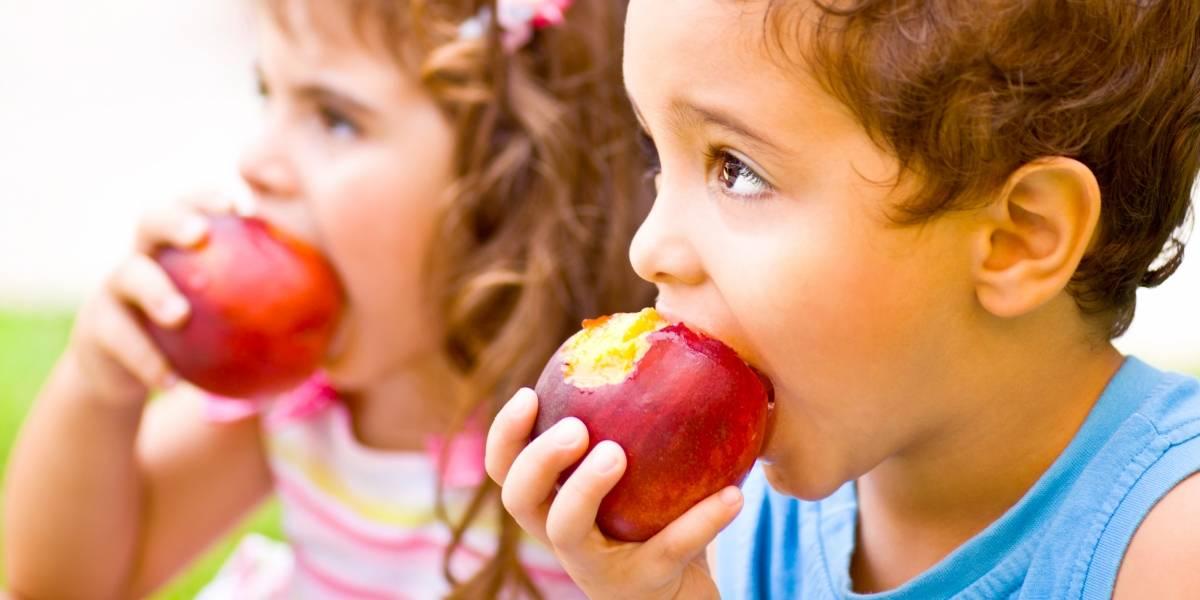 La nutrición y su importancia en el aprendizaje