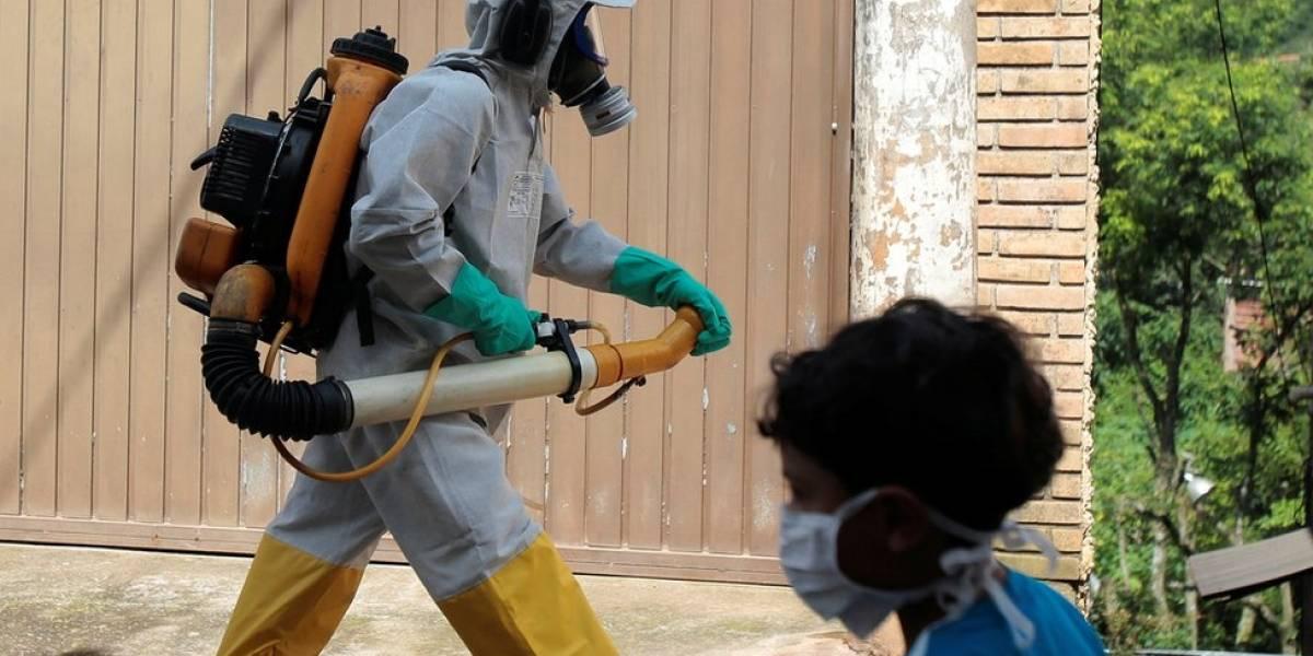 Número de cidades paulistas com febre amarela quadruplicou em 2018