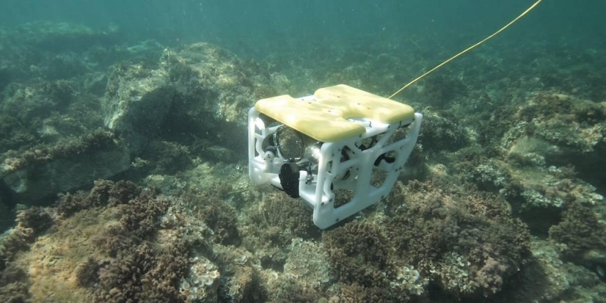 Este dron submarino está listo para bucear