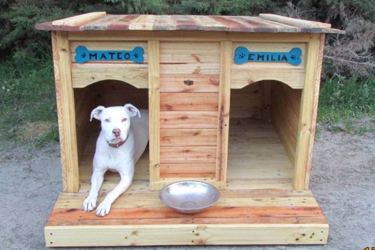 Ellos construyen casas para perros ocupando pallets que ya - Casa de perro con palets ...
