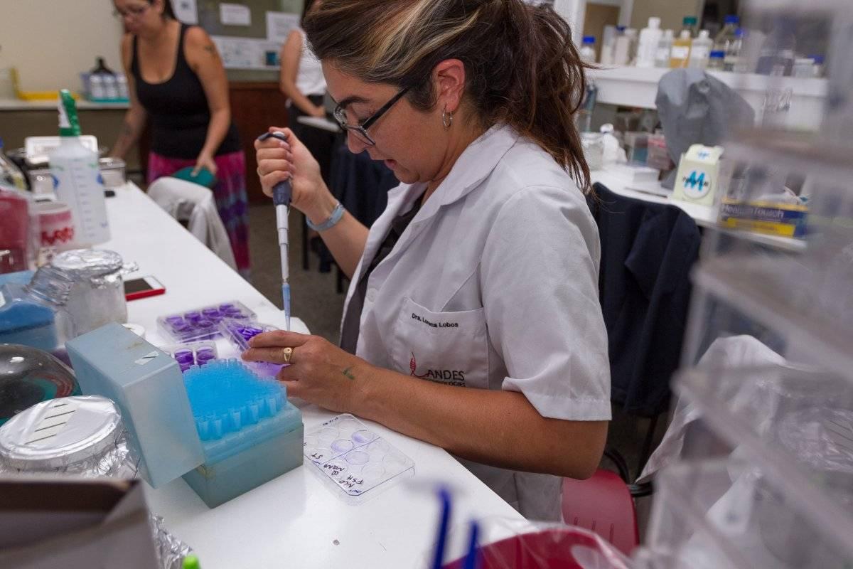 Científicas-chilenas