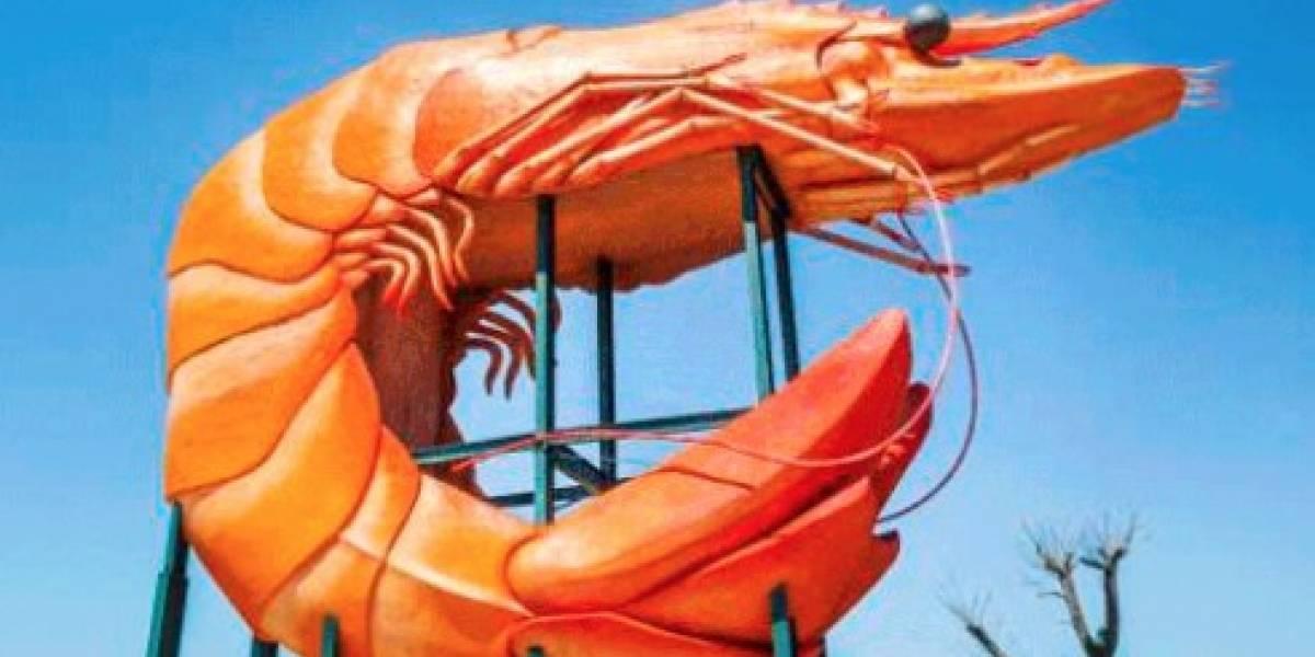Google Street View en la polémica tras insólita censura a foto del camarón más famoso de Australia