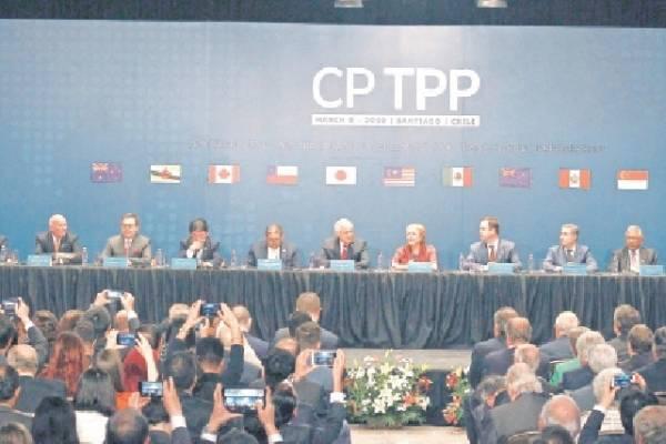 Firma TPP 11