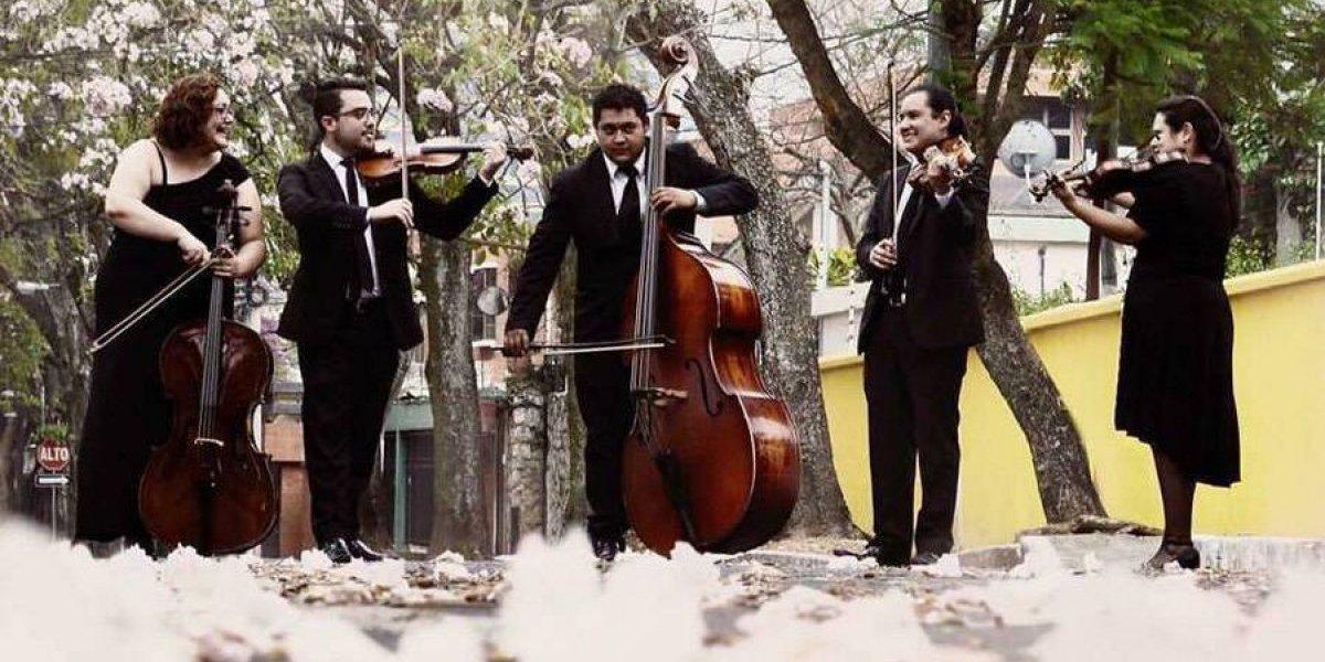 """""""Devoción en cuerdas"""", recital de música sacra ¡para no perdérselo!"""
