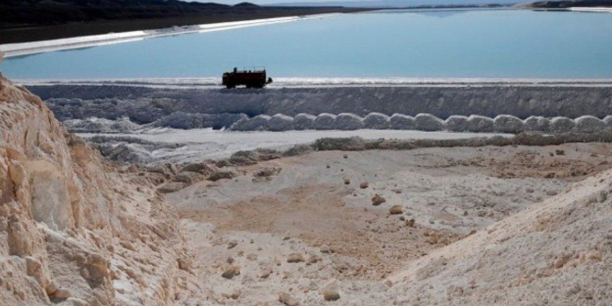 Valor agregado y divisas ofrecen tres empresas por el litio chileno