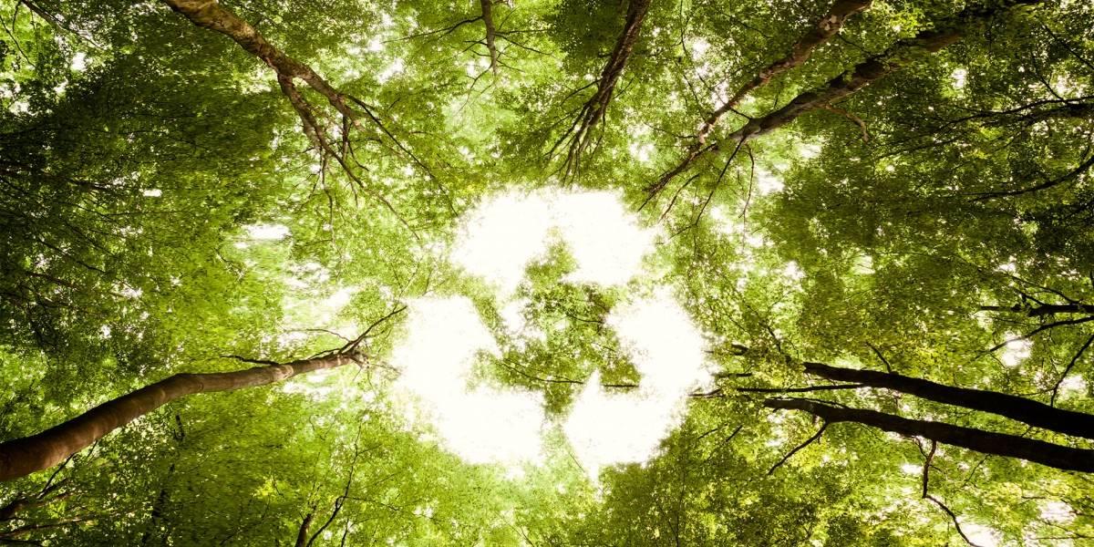 Reciclaje hecho en Chile: tres casos de productos ecosustentables chilenos
