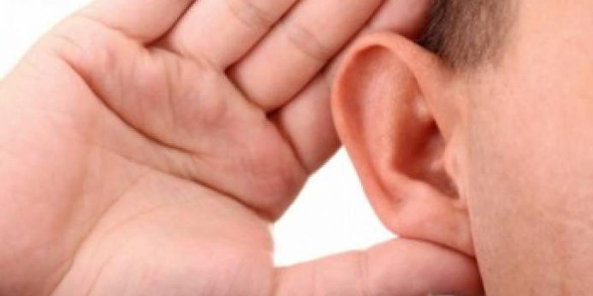 Sistema auditivo humano rinde mejor cuando se está en movimiento
