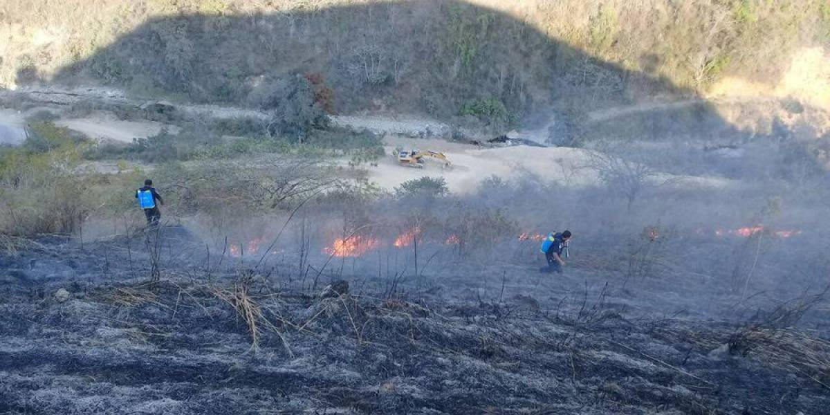 Incendios forestales han consumido 807 hectáreas