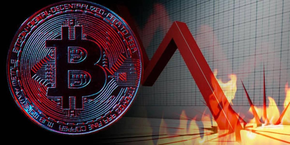 Japonés ha jugado con el precio del bitcoin todo este tiempo