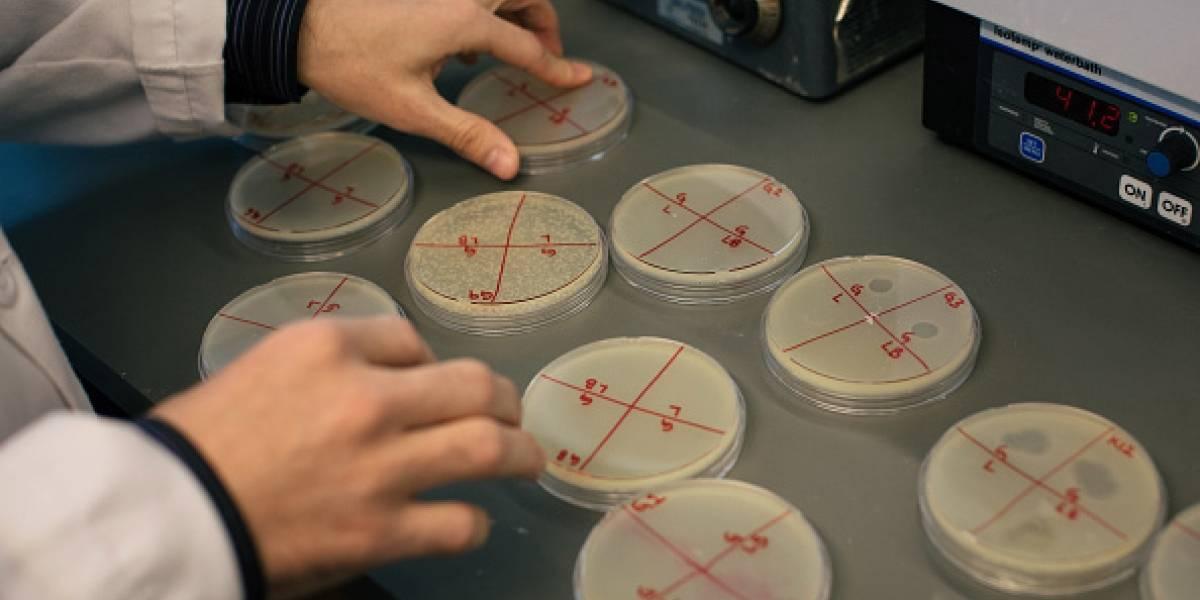 """Qué es la """"enfermedad X"""": la misteriosa amenaza que podría causar grave epidemia internacional"""