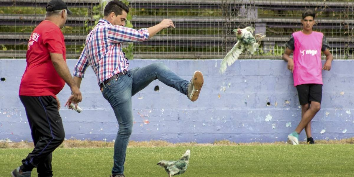 Dirigente de Primera División patea gallina y su club es sancionado