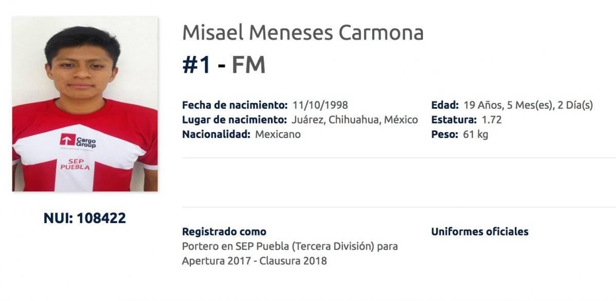 MISAEL MENESES
