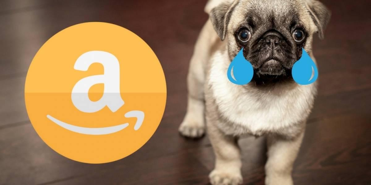Repartidor de Amazon dejó caer paquete sobre un cachorro y fue despedido