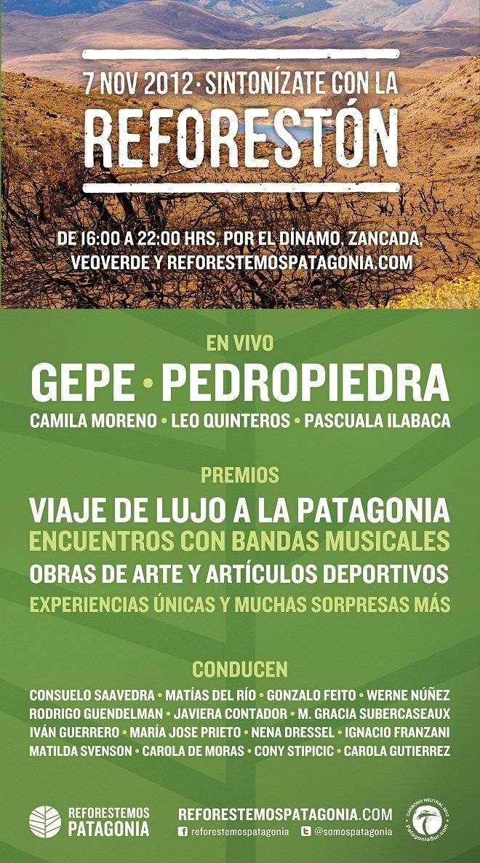 reforestc3b3n11.jpg