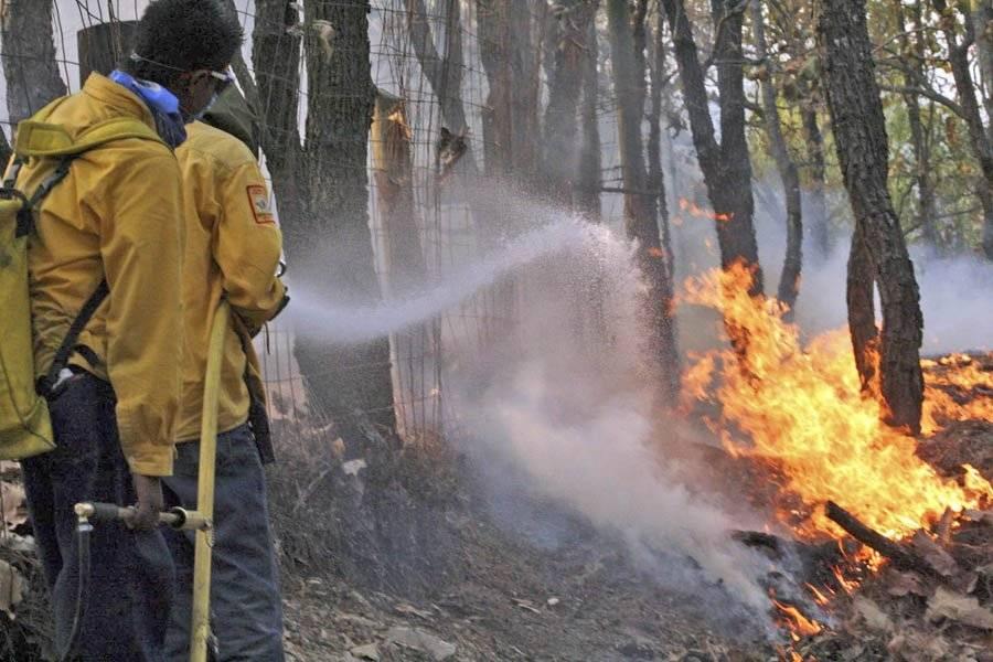 Dos zonas concentran 60% de los incendios forestales en La Primavera