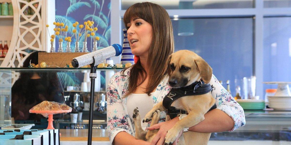 Purina lanza nueva variedad de alimentos para perros de razas pequeñas: Purina BELLA
