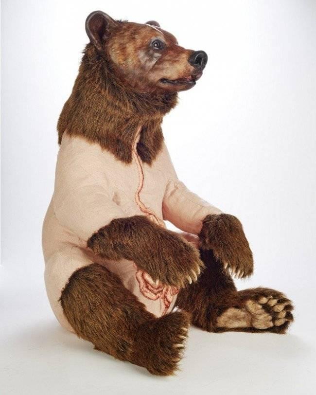 grizzly2650x1024.jpg