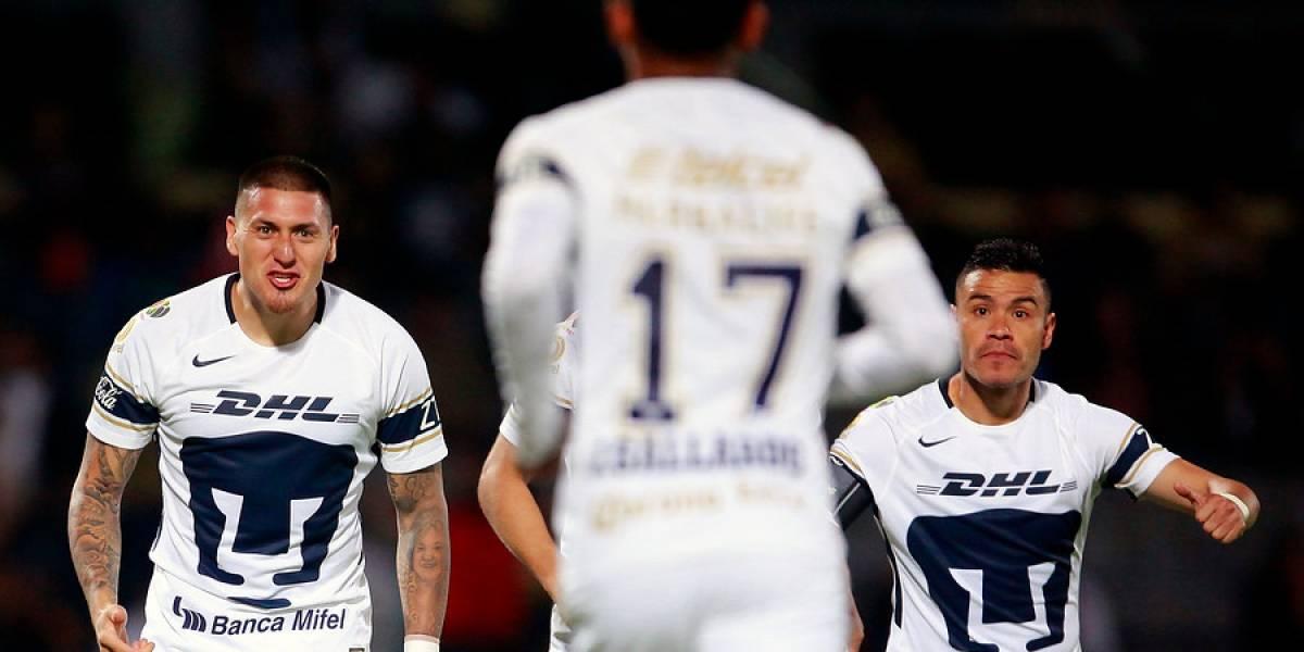 Nicolás Castillo sufre lesión en su rebelde tobillo y enciende la preocupación de Rueda en la Roja