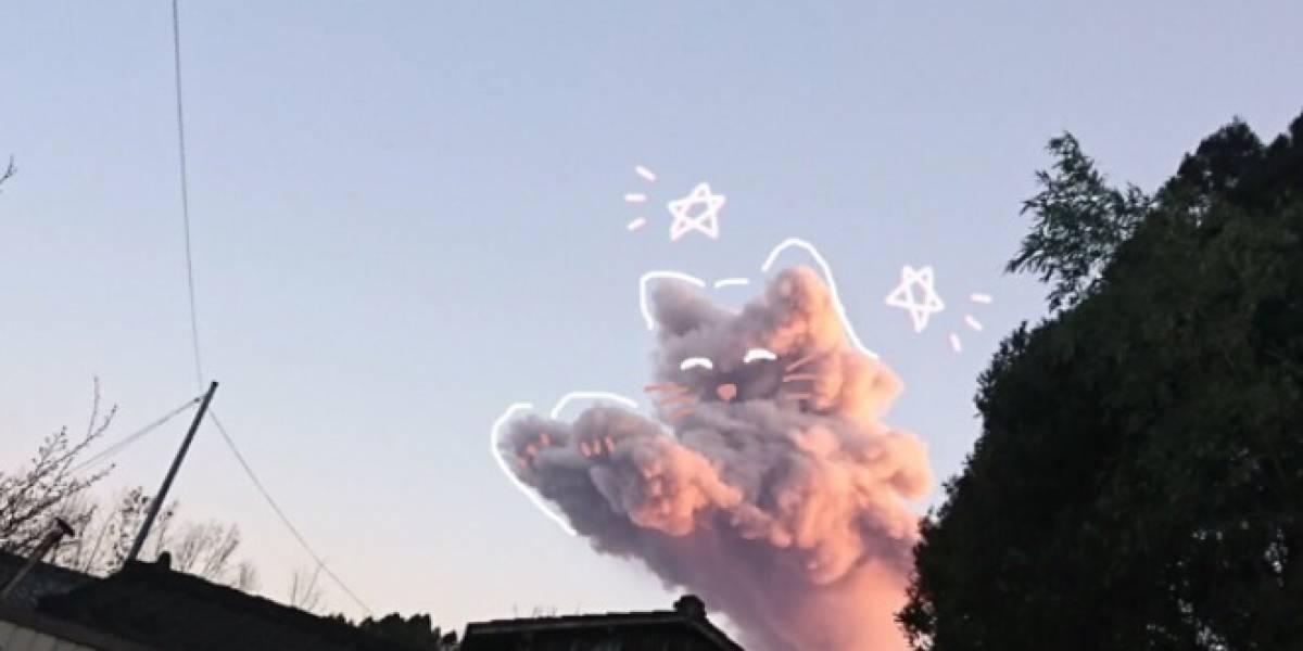 La foto viral que le derritió a todos el corazón: miró el cielo y se encontró con la nube más tierna y kawaii de la historia