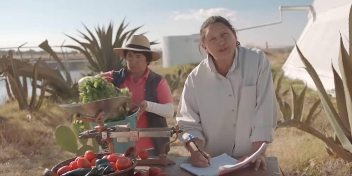 Fundación Coca-Cola conecta voluntades con la unión y pasión de los mexicanos