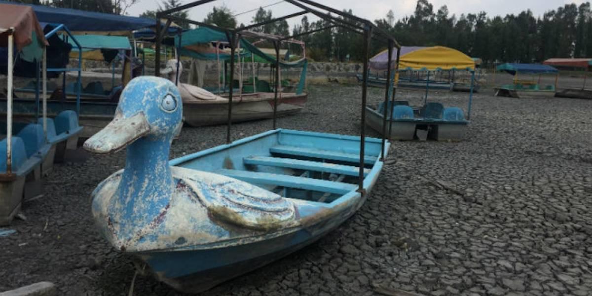 Galería: Lago de Tláhuac desapareció tras sismo del 19 de septiembre