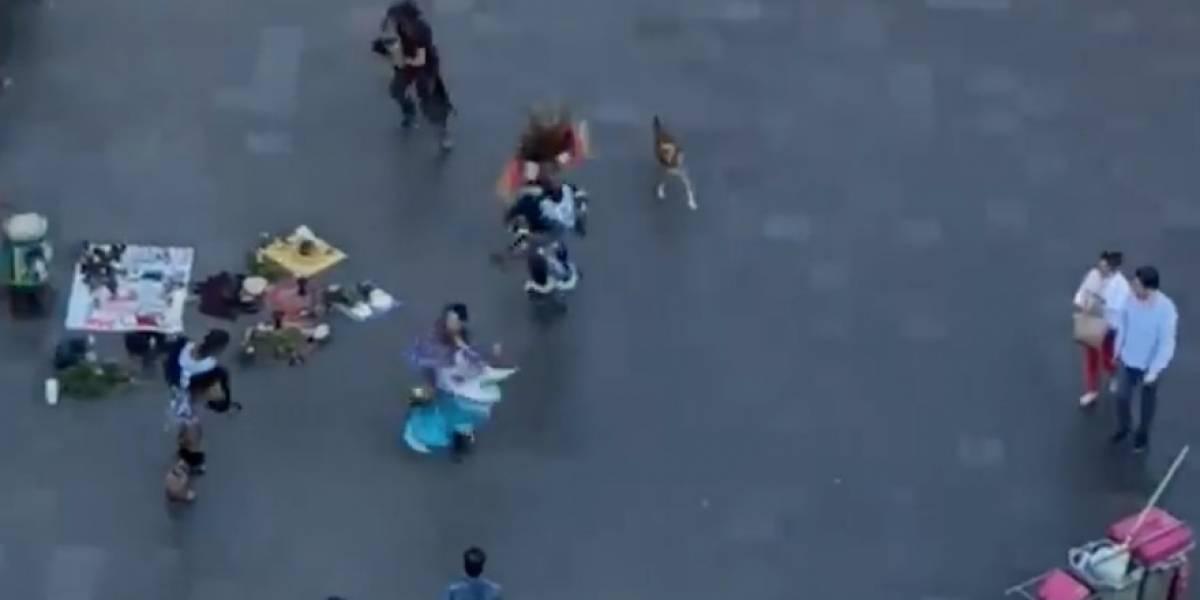 VIDEO: Perro se vuelve tendencia al ser grabado bailando en el centro de la ciudad