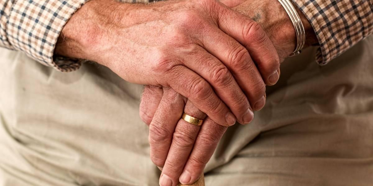 Cientistas portugueses estudam proteína que pode combater Alzheimer