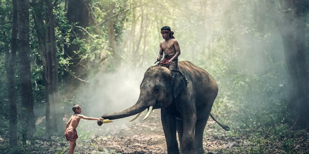 Ismael Cala: India, lugar de encuentros y reflexión