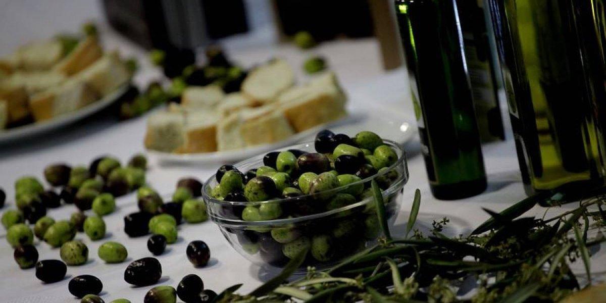 Aceite de oliva chileno confirma su calidad de exportación con aumentó en 41 % en las ganancias