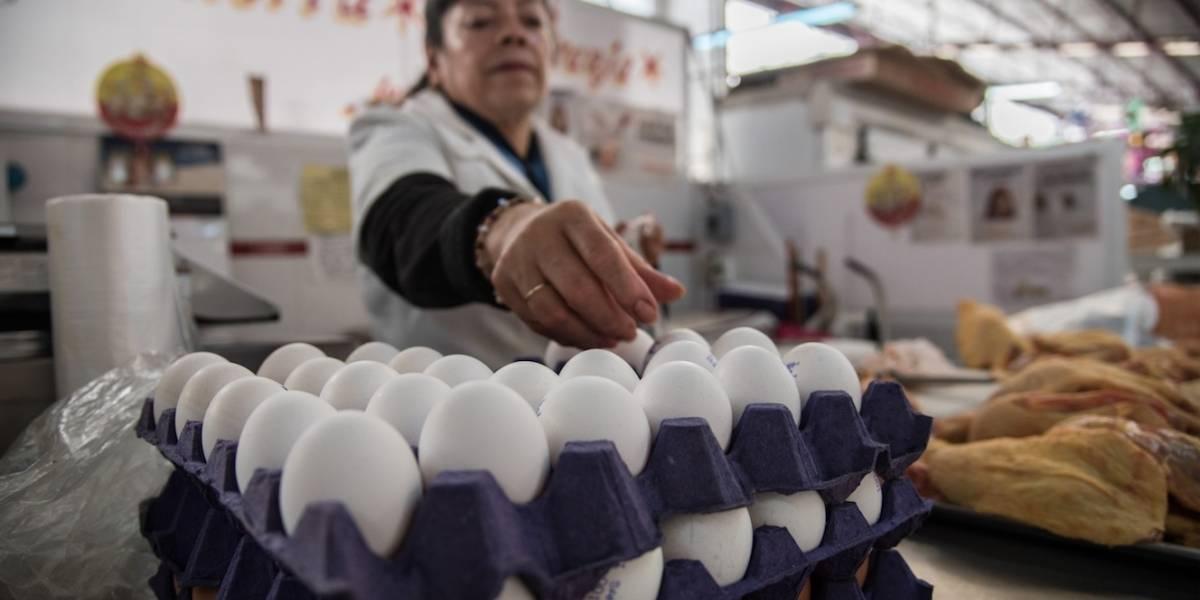 Cofece detecta prácticas monopólicas en mercado de huevo