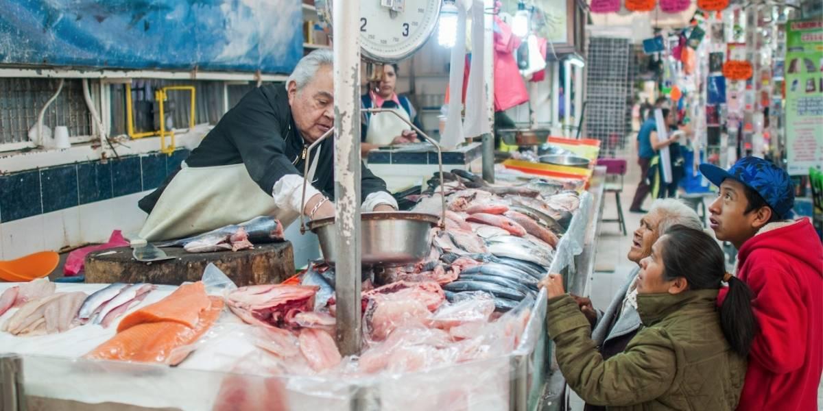Pescados reportan alzas de hasta 290% previo a Semana Santa: Profeco