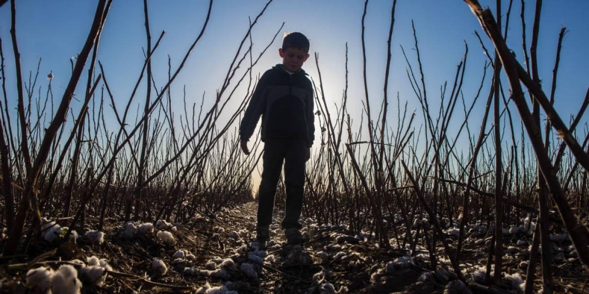 México y 10 países más alertan sobre la futura crisis del agua