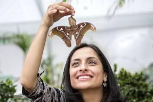https://www.publimetro.com.mx/mx/bbc-mundo/2018/03/21/blanca-huertas-la-colombiana-que-resguarda-en-londres-la-coleccion-mas-grande-y-antigua-de-mariposas-del-mundo-con-5-millones-de-ejemplares.html