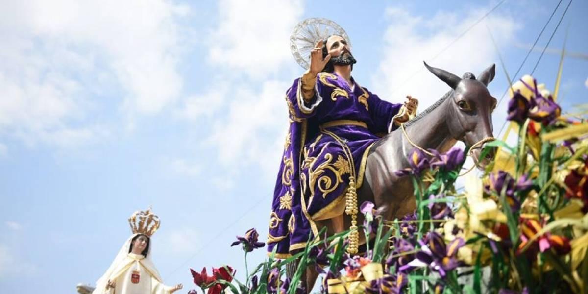 Jesús de las Palmas recuerda la entrada triunfal a Jerusalén