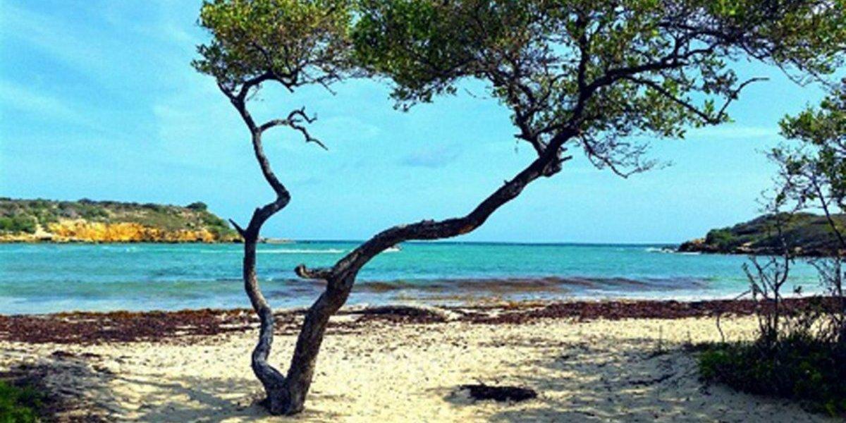 Cabo Rojo anuncia plan de seguridad para Semana Santa