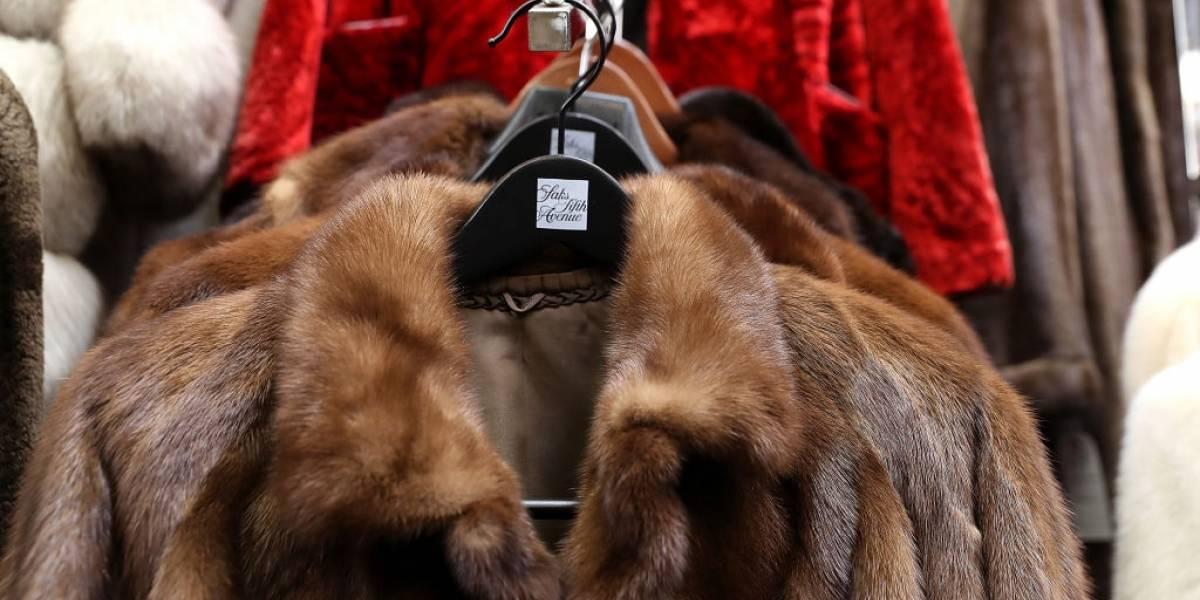 São Francisco proíbe venda de produtos feitos de pele animal
