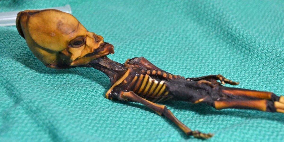 """Científicos ponen fin a uno de los mayores enigmas: expertos mundiales revelan la verdad detrás del """"esqueleto alien"""" hallado en Chile"""