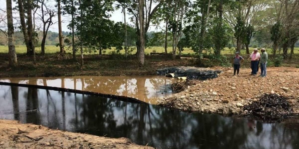 Gran mortandad de peces en el Magdalena Medio por derrame de petróleo