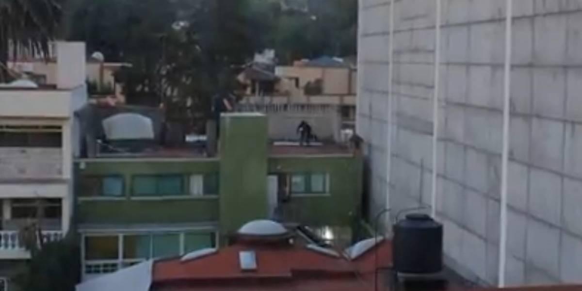 Video: Denuncian a vecino que muele a golpes a su perro en la azotea