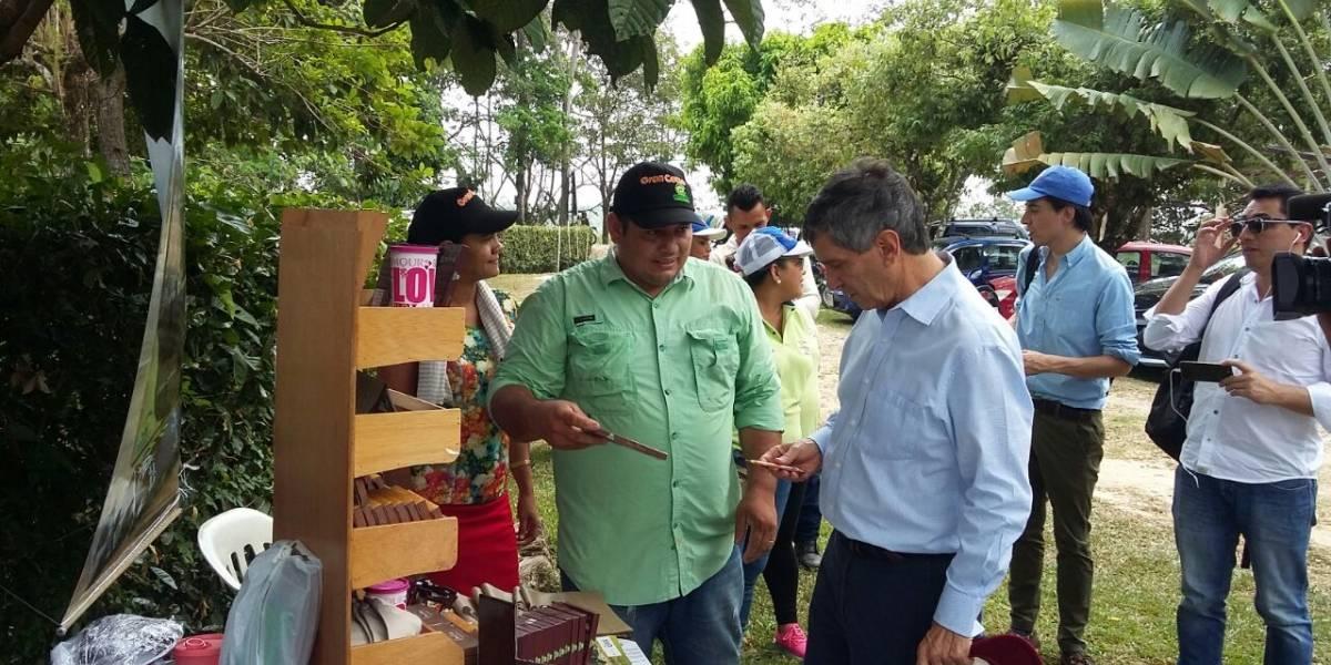 En Arauca se cansaron de plantar coca