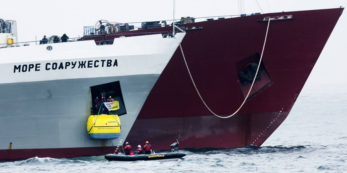 Chileno se enfrenta a buque ucraniano en defensa de ballenas y pingüinos en la Antártica