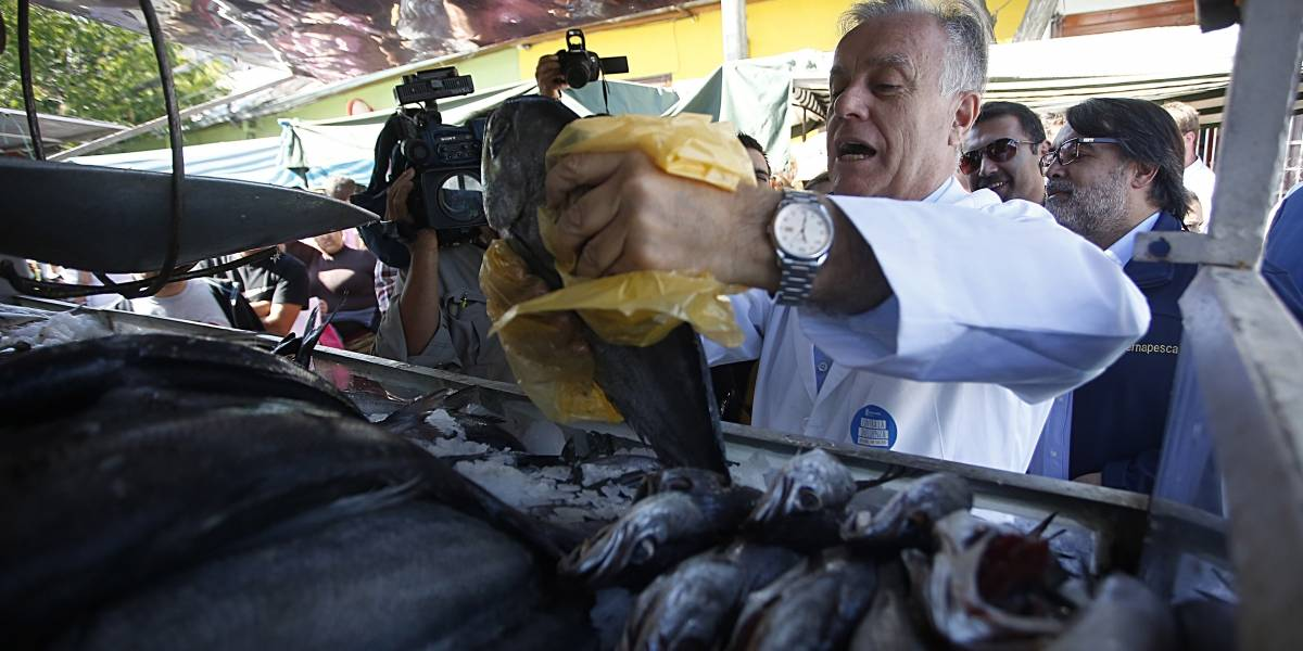 Minsal: Llaman a evitar el consumo de pescado ilegal durante Semana Santa