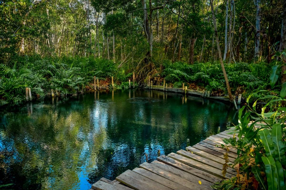 Las maravillas naturales de Yucatán